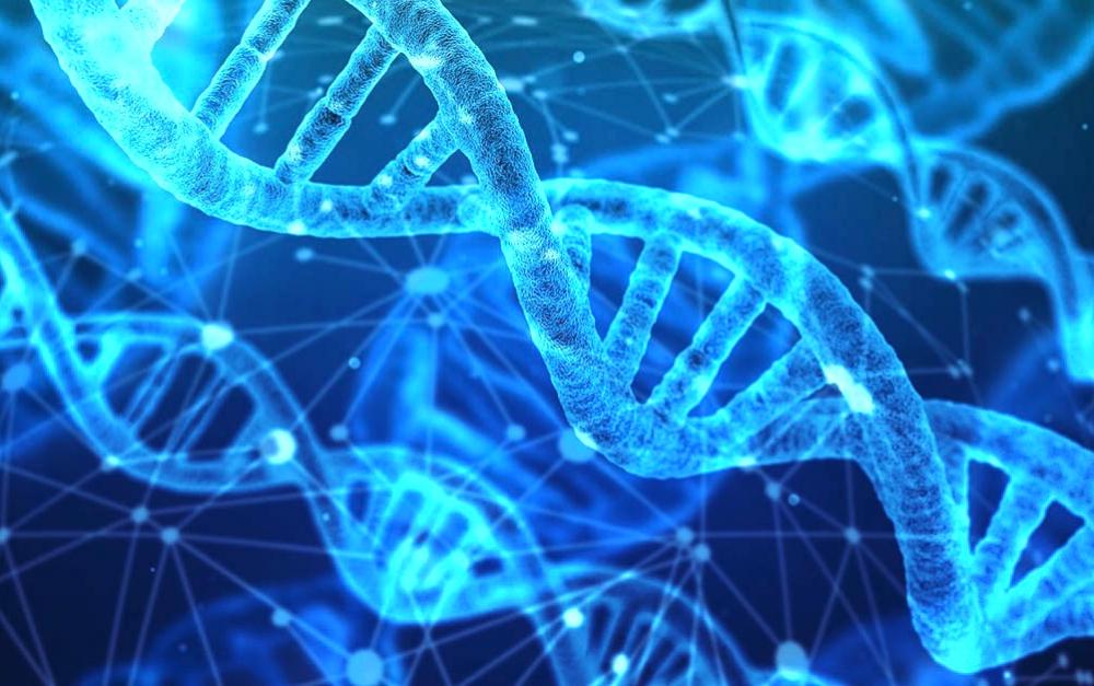 跟蹤追擊    美國偵探用DNA匹配逮捕潛逃41年的強奸殺人犯