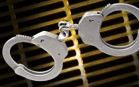 休斯頓警方全面打擊人口販賣   32人被捕