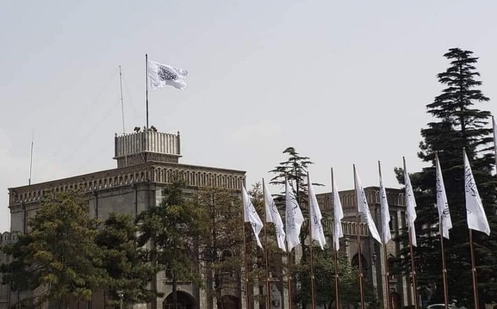 美国9/11事件20周年纪念日塔利班在总统府升起白旗