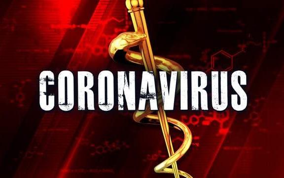大休斯頓地區哈裏斯郡確認兩個與旅行相關的新冠病例