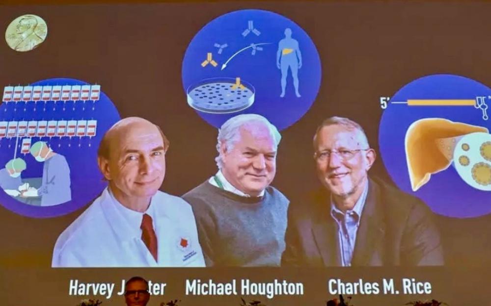 美英叁科學家因發現丙型肝炎病毒獲得諾貝爾生理學或醫學獎