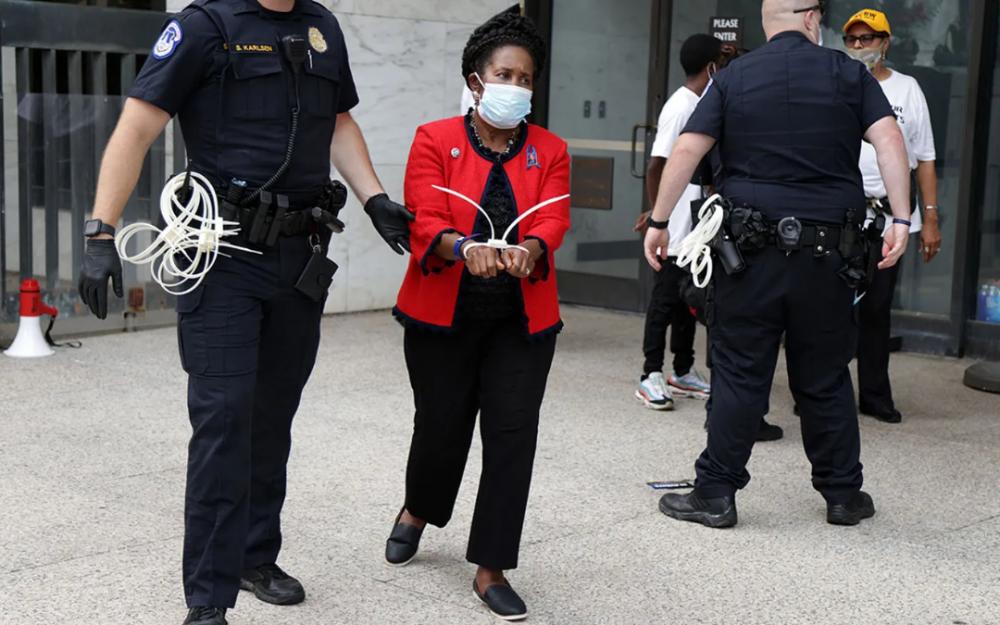 美國國會衆議員希拉·傑克遜·李在華盛頓抗議期間被拘留