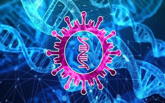 【重磅】實驗性COVID-19疫苗可保護靈長類動物免受上下呼吸道冠狀病毒感染