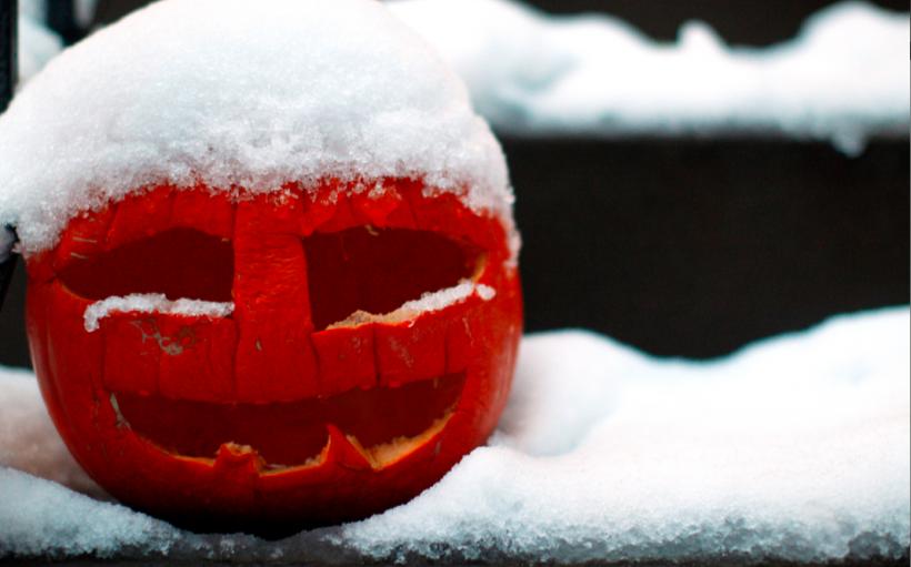 冷氣團發威!休斯頓天氣將持續冷一周,迎來涼爽萬聖節