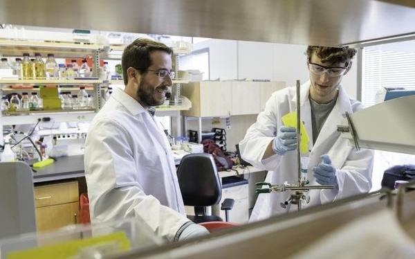 """德州大學研究人員在新冠狀病毒疫苗方面取得""""關鍵突破"""""""