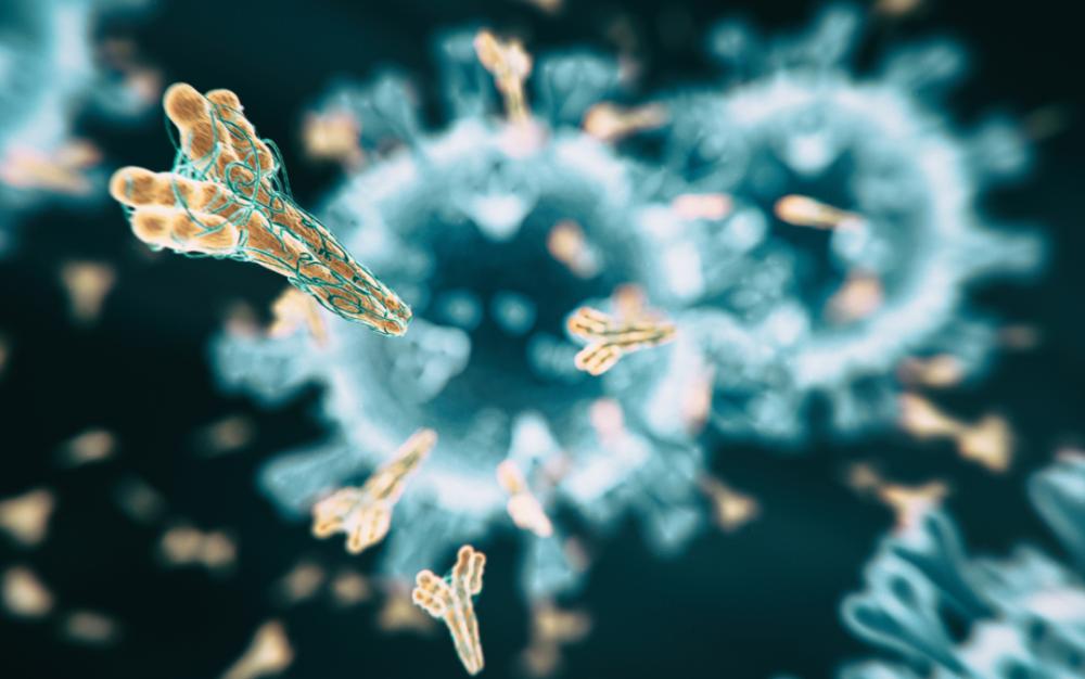 """重大發現:人工單克隆抗體首次""""中和""""冠狀病毒"""