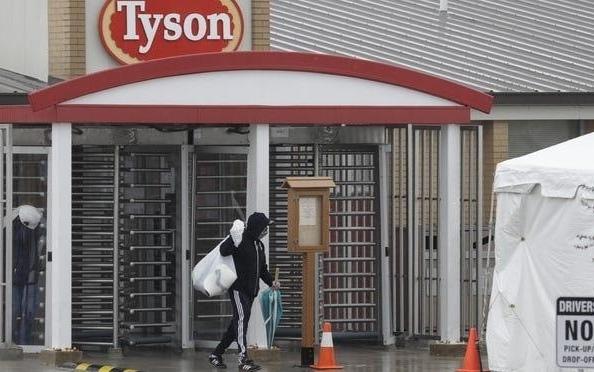 """因為冠狀病毒感染期間 泰森董事長警告稱""""肉類短缺"""" 川普命令肉類和家禽加工廠在冠狀病毒期間保持開放"""