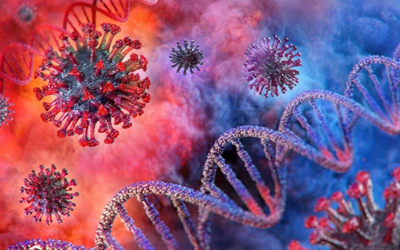 新型冠状病毒疫苗是怎样研发的