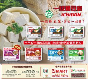 一級棒豆腐